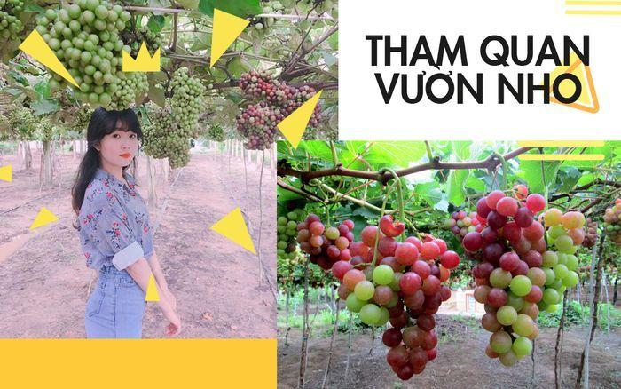 tour-team-building-gala-dinner-ninh-chu-vinh-hy-tanyoli-3n3d8