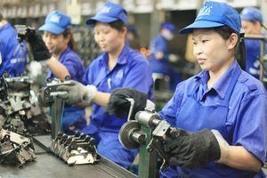 Dịch vụ tư vấn làm hồ sơ xuất khẩu lao động Canada
