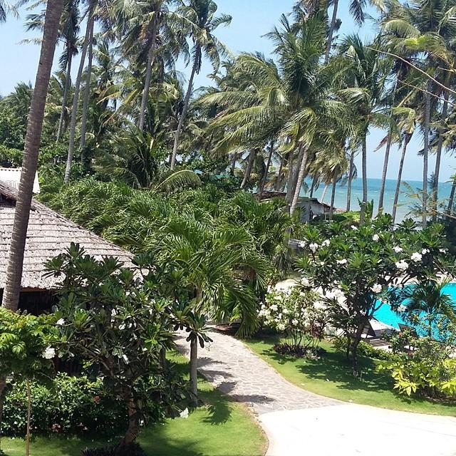 resort-phan-thiet-mui-ne-gan-trung-tam20