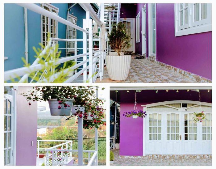 homestay-purplehouse