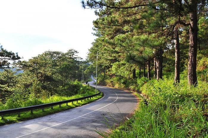 Đường đến Hồ Hồ Tuyền Lâm