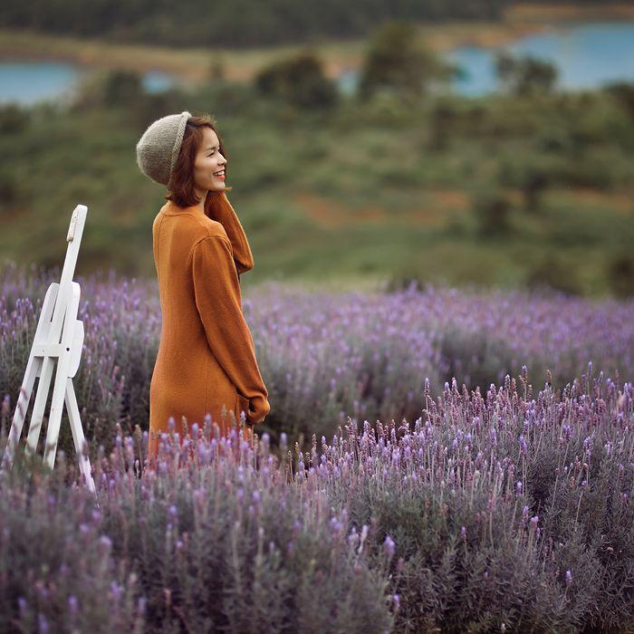 hoa-lavender-da-lat-10