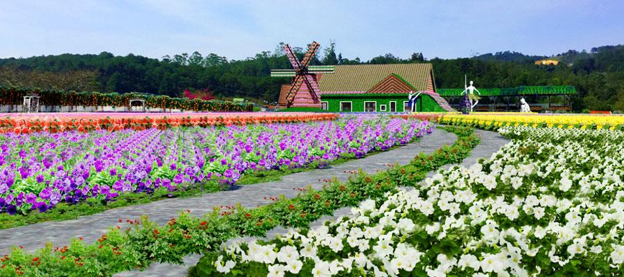 doi-hoa-fresh-garden