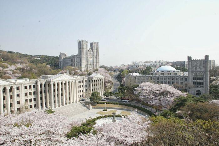 dai-hoc-kyunghee