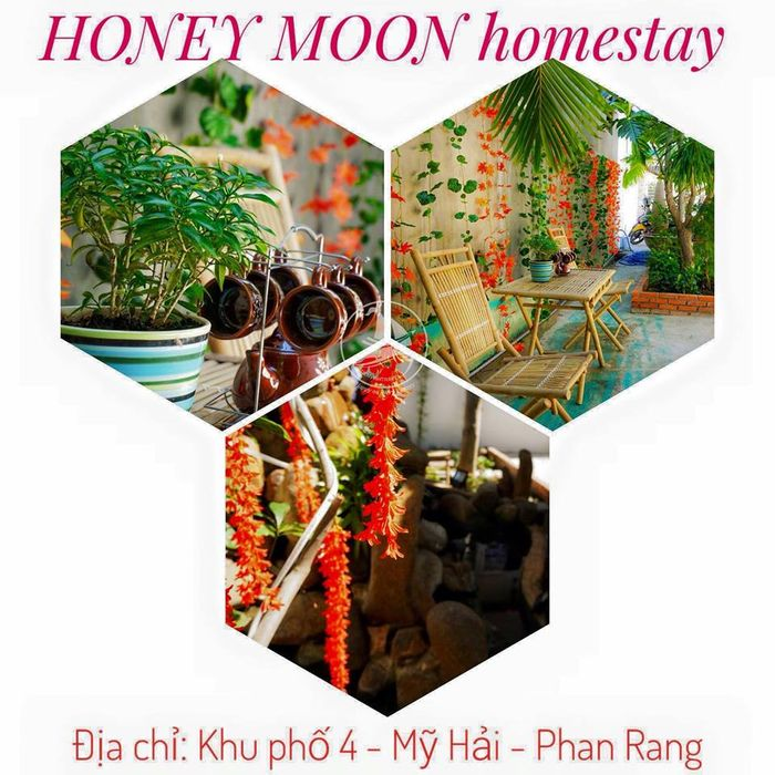 honey-moon-homestay