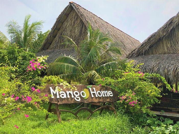 mango-home