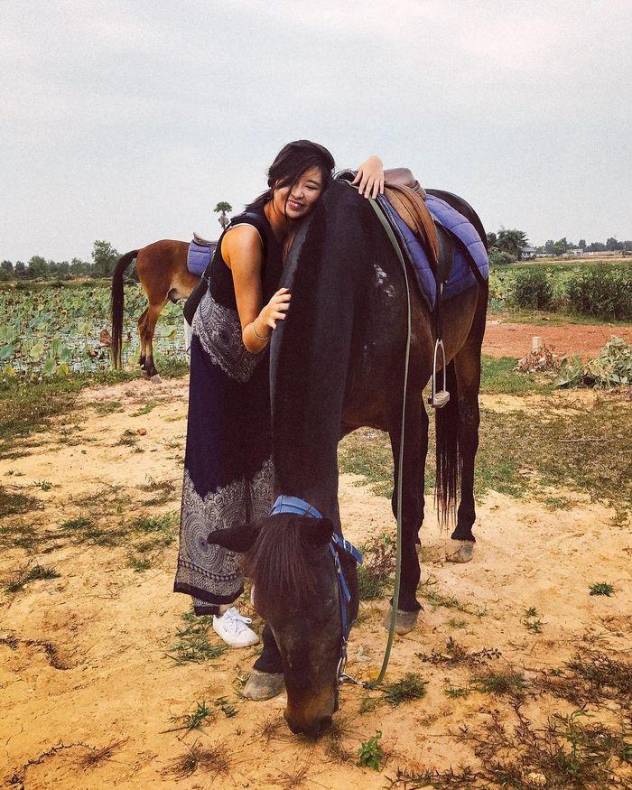 siem-reap-campuchia-happy-ranch-horse-farm