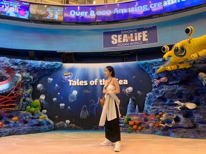 tham-quan-sea-life-thai-lan