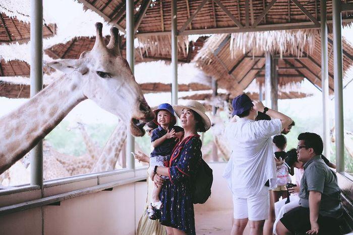 safari-world-bangkok4