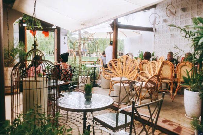 the-bird-cafe