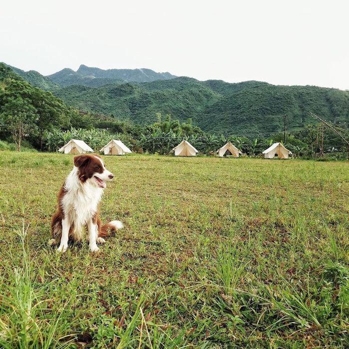 Khu du lịch sinh thái Yên Retreat
