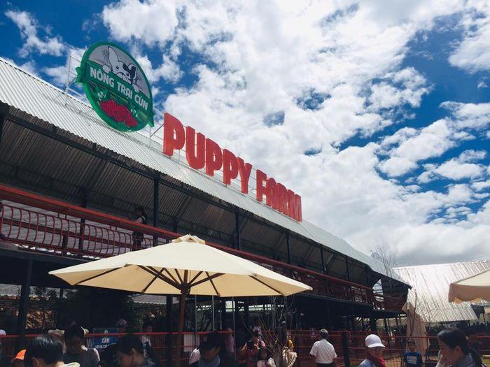 thuong-thuc-do-uong-puppy-farm