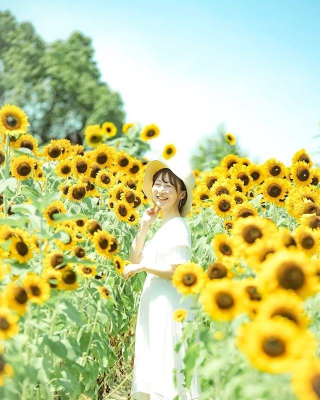 hoa-dong-garden17