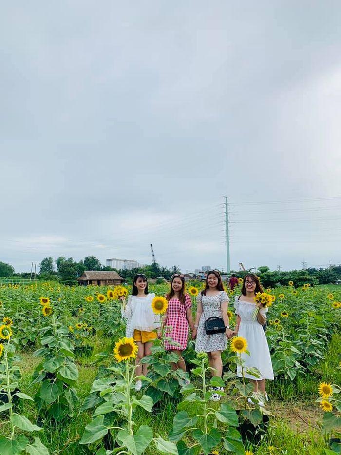 hoa-dong-garden-binh-chanh