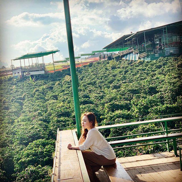 me-linh-coffee-garden-da-lat