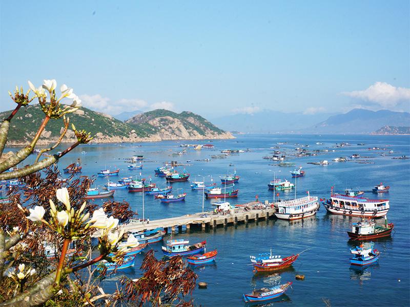 Cảng Ba Ngòi Cam Ranh Khánh Hòa - tuyến giao thông chính đi Bình Ba