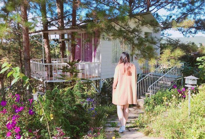 khung-canh-pine-hill-homestay-da-lat