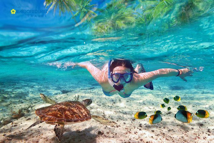 hoat-dong-lan-bien-o-maldives