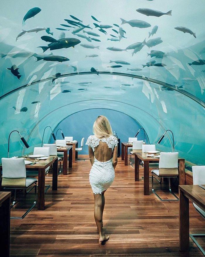nha-hang-duoi-bien-maldives