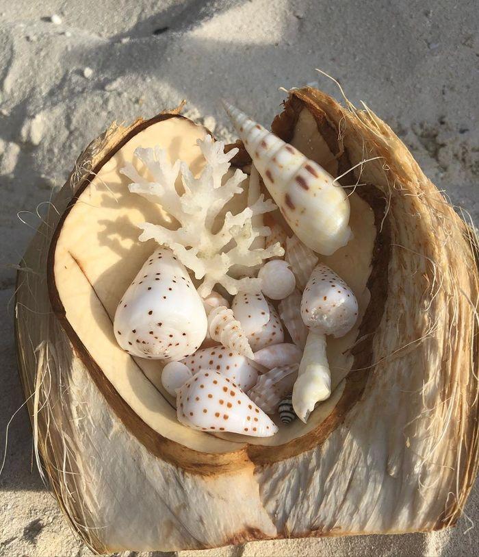 mua-gi-lam-qua-khi-du-lich-maldives