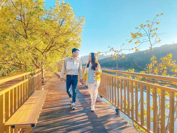 con đường đẹp như Hàn Quốc ở Mộc Trà Farm