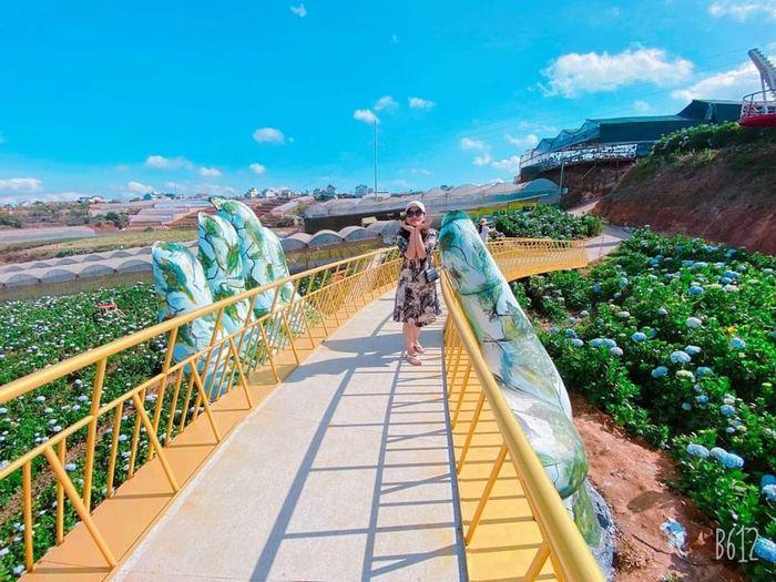 Xuất hiện 2 cây Cầu Vàng Đà Lạt gây bão mạng, nhanh chân check in ...