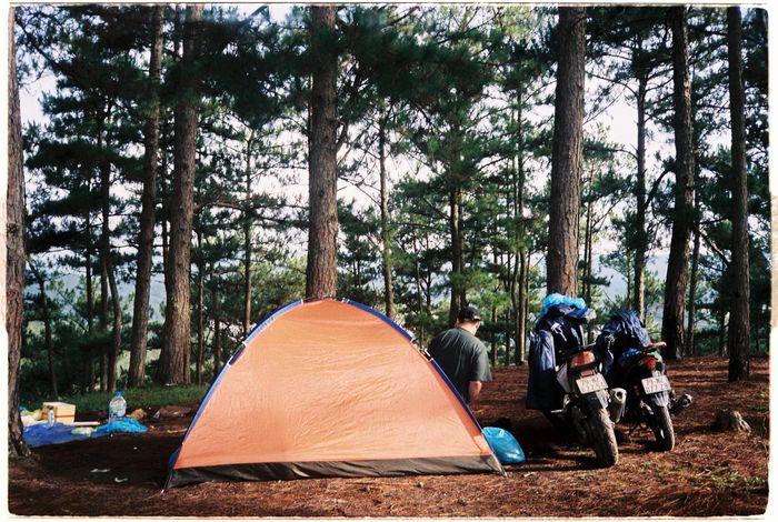 Cắm trại Đà Lạt với nhiều trải nghiệm thú vị