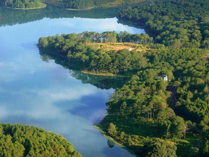Mặt hồ phẳng lặng bao quanh bởi rừng thông