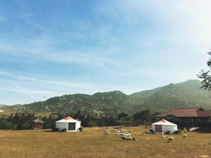 Không gian ấn tượng ở khu du lịch Tanyoli