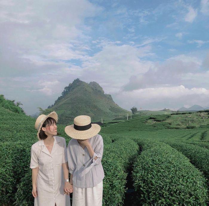 Check-in tại đồi chè Mộc Châu, Sơn La