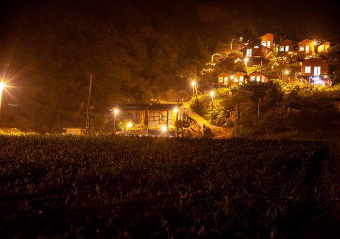 Thị trấn Mộc Châu lung linh lúc về đêm