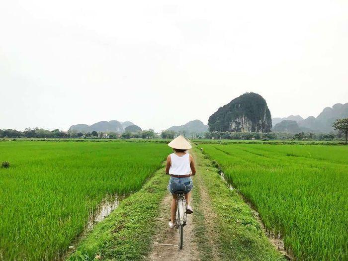 Bạn trẻ du lịch Tam Cốc, Ninh Bình đang dạo xe đạp