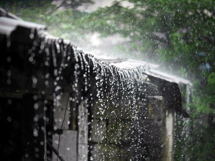 Tháng 6 cũng bắt đầu xuất hiện những cơn mưa đầu mùa