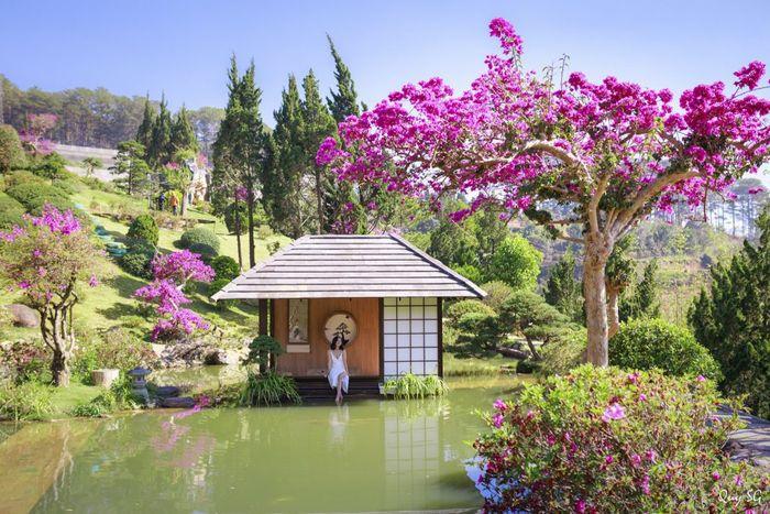 tour-da-lat-tet-nguyen-dan-que-garden